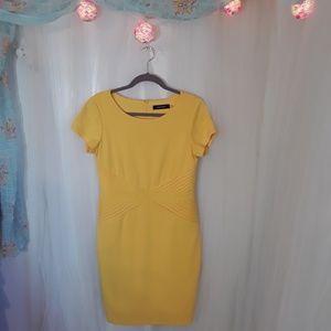 Sunny Yellow Spring Wiggle Dress. 8p. Flattering